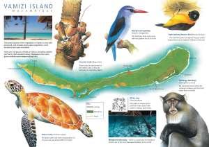 Vamizi Island Leaflet 2