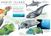vamizi-island-leaflet-1